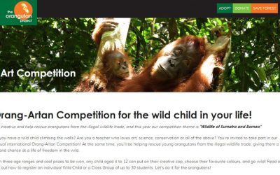 Orang-Artan Competition for the wild child in your life!