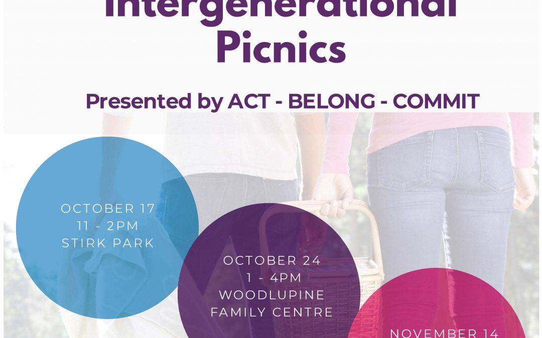 Intergenerational Picnics
