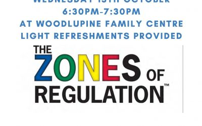 Zones of Regulation Workshop